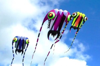 Close Encounters of the Kite Kind